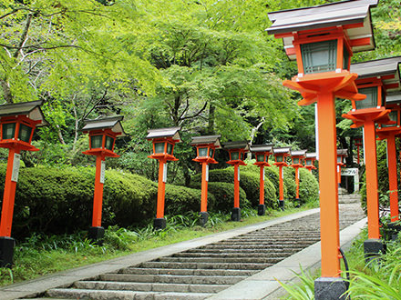 The Kyoto Connoisseur's Guide to Kyoto A Stroll of Elegance and Tranquility in Rakuhoku