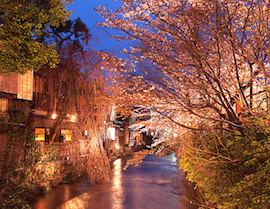 Shirakawa River in Gion